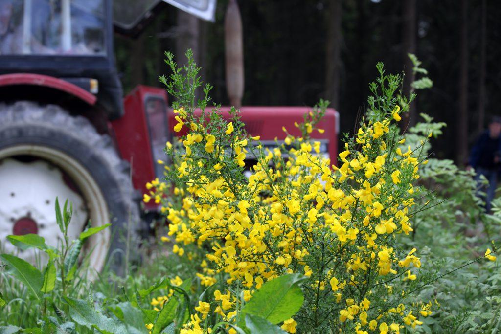 Wir unterstützen unsere starke heimische Landwirtschaft